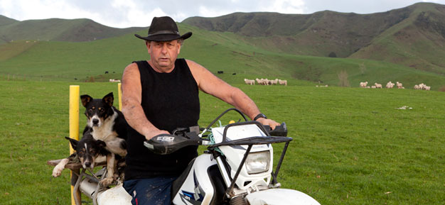 Bryan Hocken Tarata Sheep Farmer